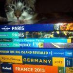 Travel Research: Are Travel Guidebooks Still Useful in the Digital Age?