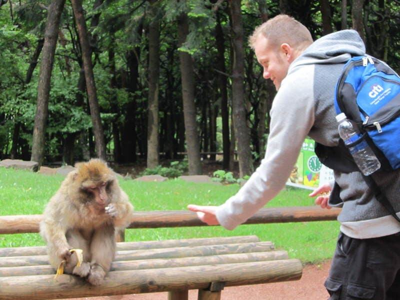 monkey park in Alsace France