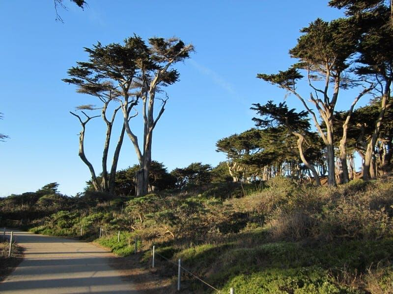 Lands End hike San Francisco