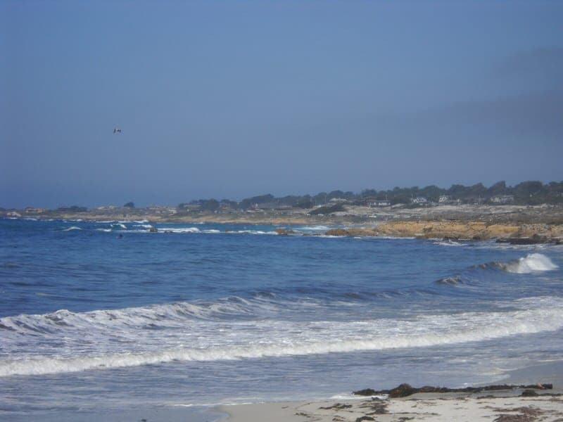 17 Mile Drive A Scenic Drive Along The Monterey Peninsula