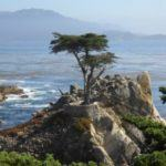 17-Mile Drive: A Scenic Drive along the Monterey Peninsula in Pebble Beach, California