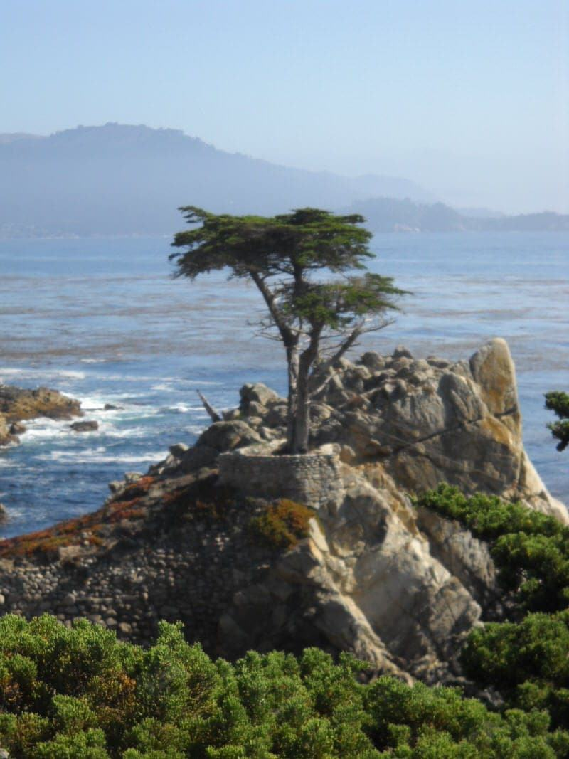 17 Mile Drive 17-Mile Drive Pebble Beach Monterey