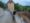 best things to do Rothenburg ob der Tauber