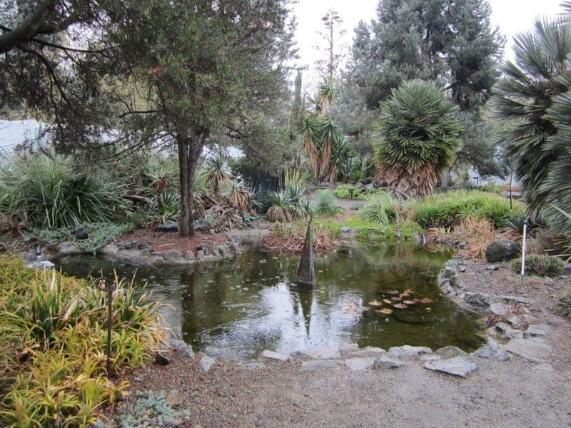 The Ruth Bancroft Garden Walnut Creek California