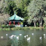 Golden Gate Park San Francisco things to do
