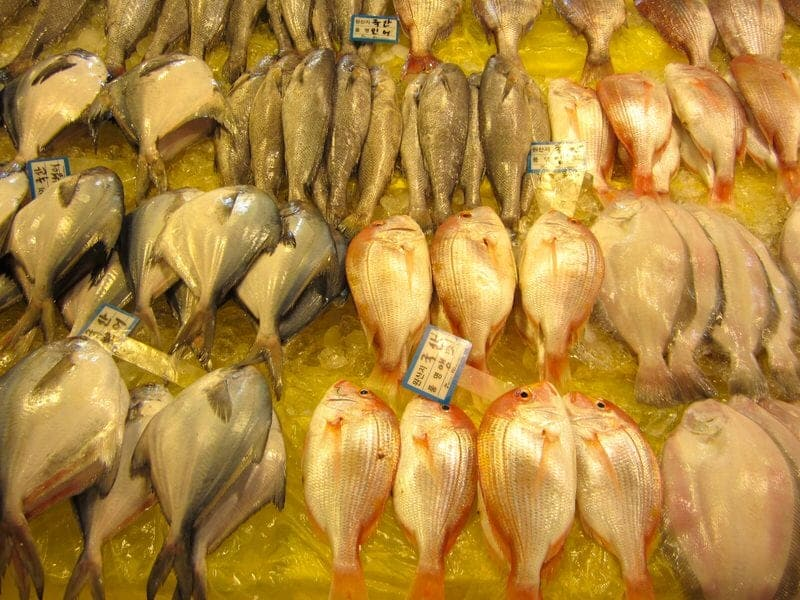 Noryangjin Fish Market in Seoul South Korea Noryangjin Fisheries Wholesale Market
