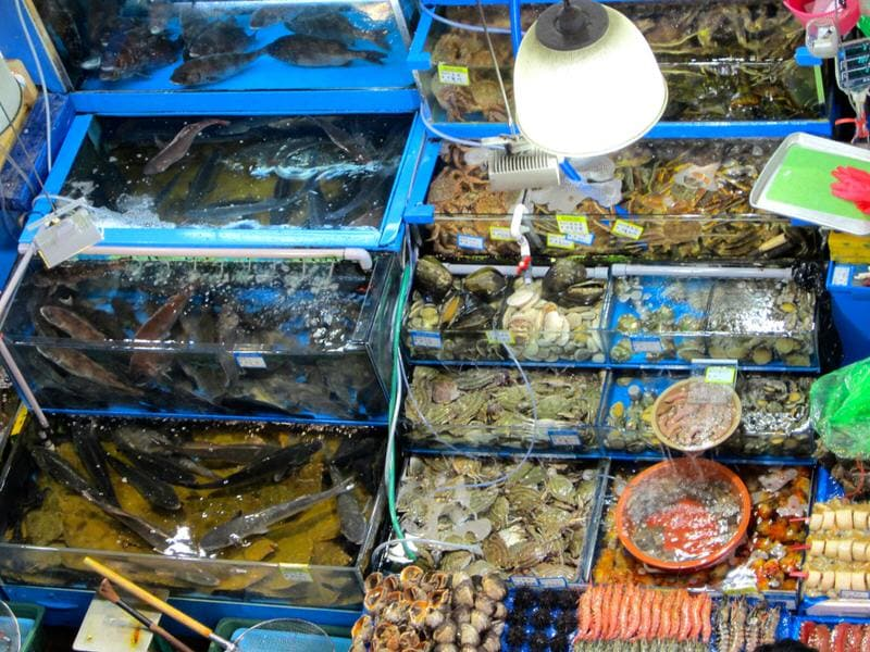 Fresh Fish For Breakfast Noryangjin Fish Market In Seoul