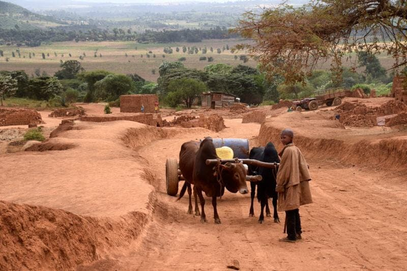 Karatu Tanzania  city images : top things to do in Karatu Tanzania attractions in Karatu