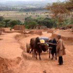 Top 10 Things to Do in Karatu Tanzania
