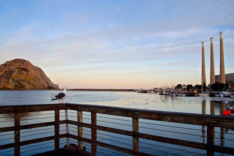 Morro-Bay-rock-harbor-water