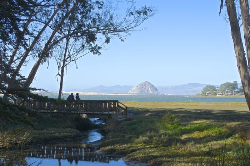 Audubon Sweet Springs Nature Preserve Los Osos California Morro Rock
