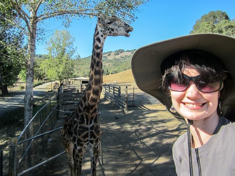 Safari West safari wildlife tours Sonoma