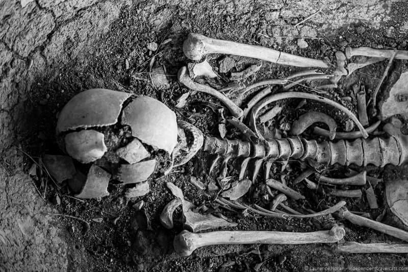 skeleton at archaeological site of Colombarone natural park mount san Bartolo