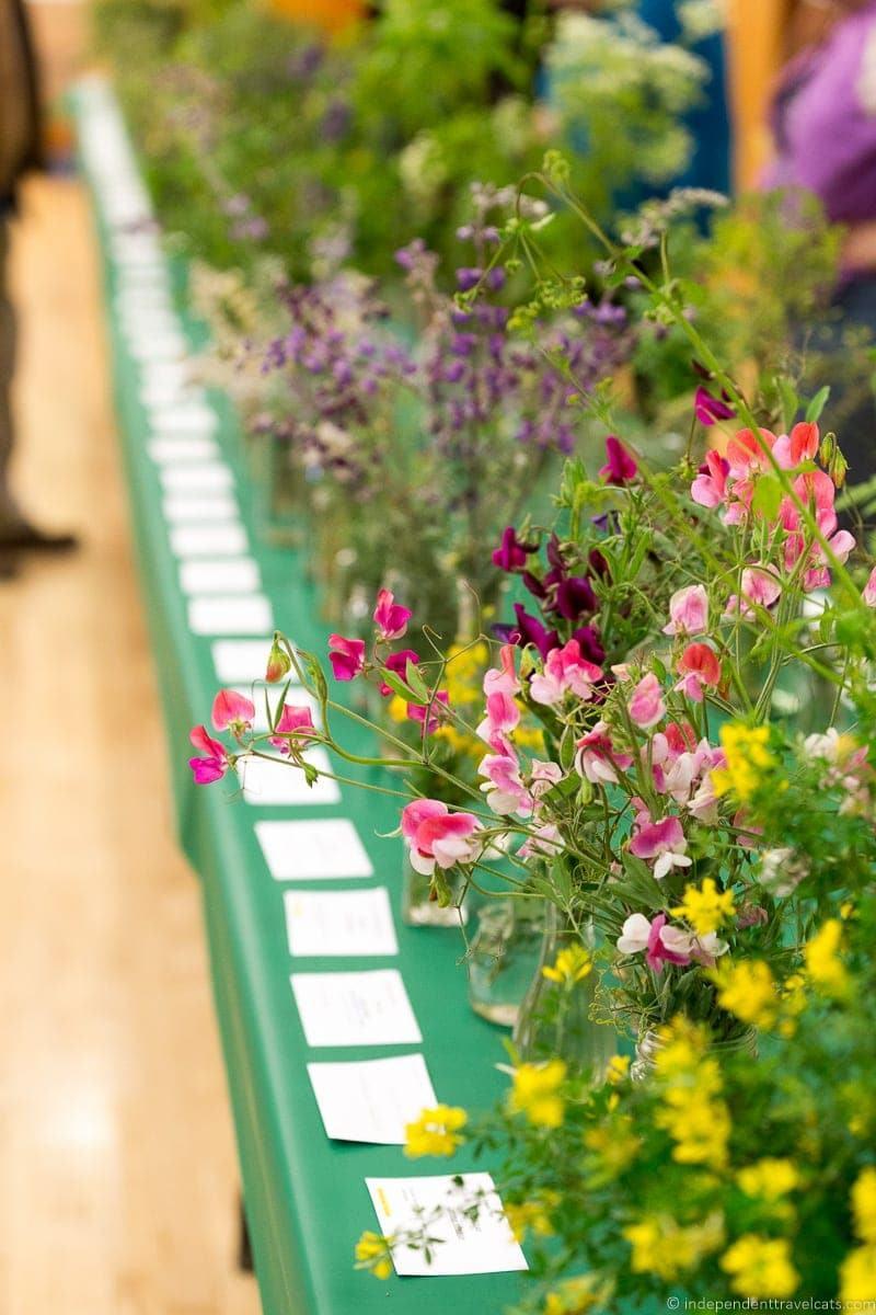 wildflower show in Cambria California