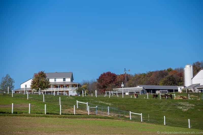 farm things to do in Amish Country Ohio visiting Holmes County Ohio