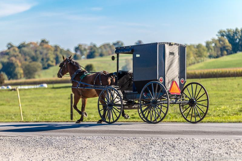 Amish horse and buggy things to do in Amish Country Ohio visiting Holmes County Ohio