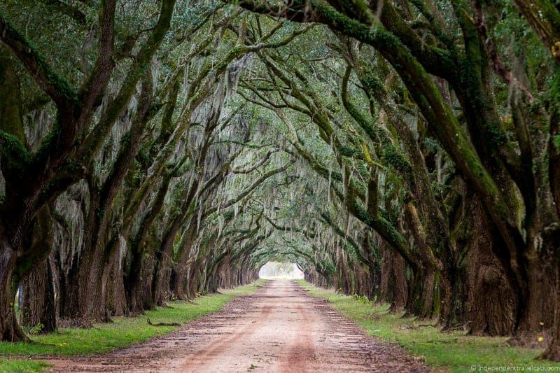 Evergreen Plantation Louisiana Plantations River Road New Orleans Baton Rouge