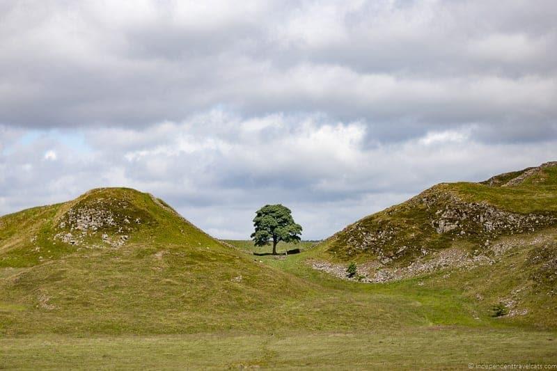 Sycamore Gap Scottish Borders highlights travel Rabbies