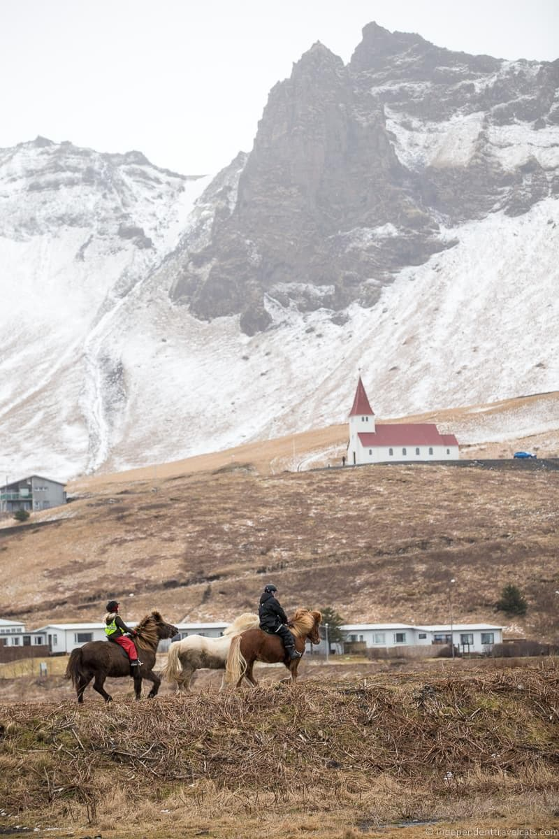 horseback riding Iceland in winter activities day trips tours