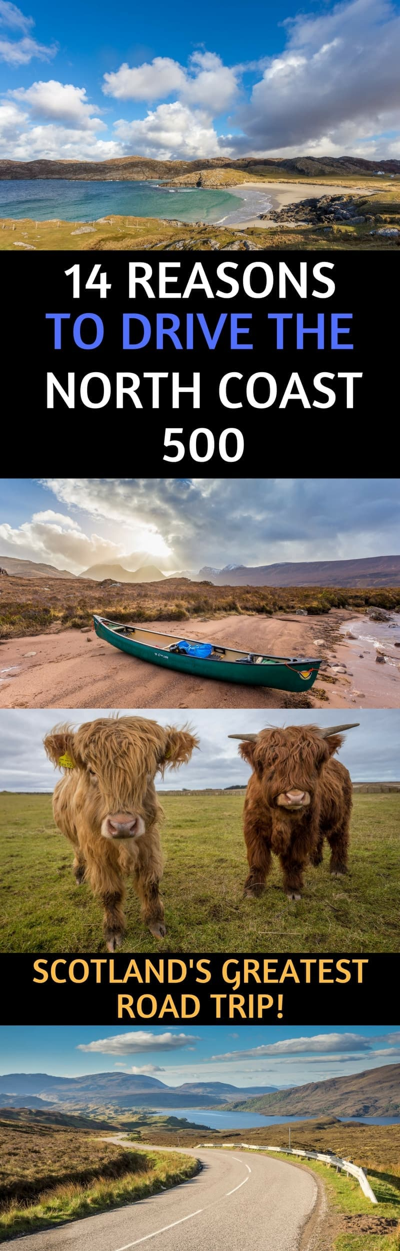 The North Coast 500 is Scotland's best road trip! After driving it several times ourselves, we present 14 of the top reasons to drive this route which include amazing wildlife, hiking, golfing, food, castles, whisky, and local hospitality! We also provide lots of resources & advice for planning your own North Coast 500 road trip! #NorthCoast500 #NC500 #Scotland #roadtrip #ScottishHighlands