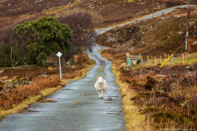 how to avoid the crowds on the Isle of Skye