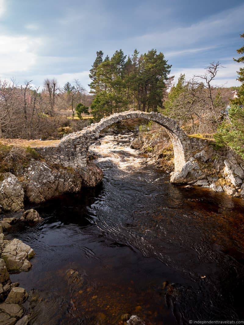 Carrbridge things to do in the Cairngorms National Park in winter