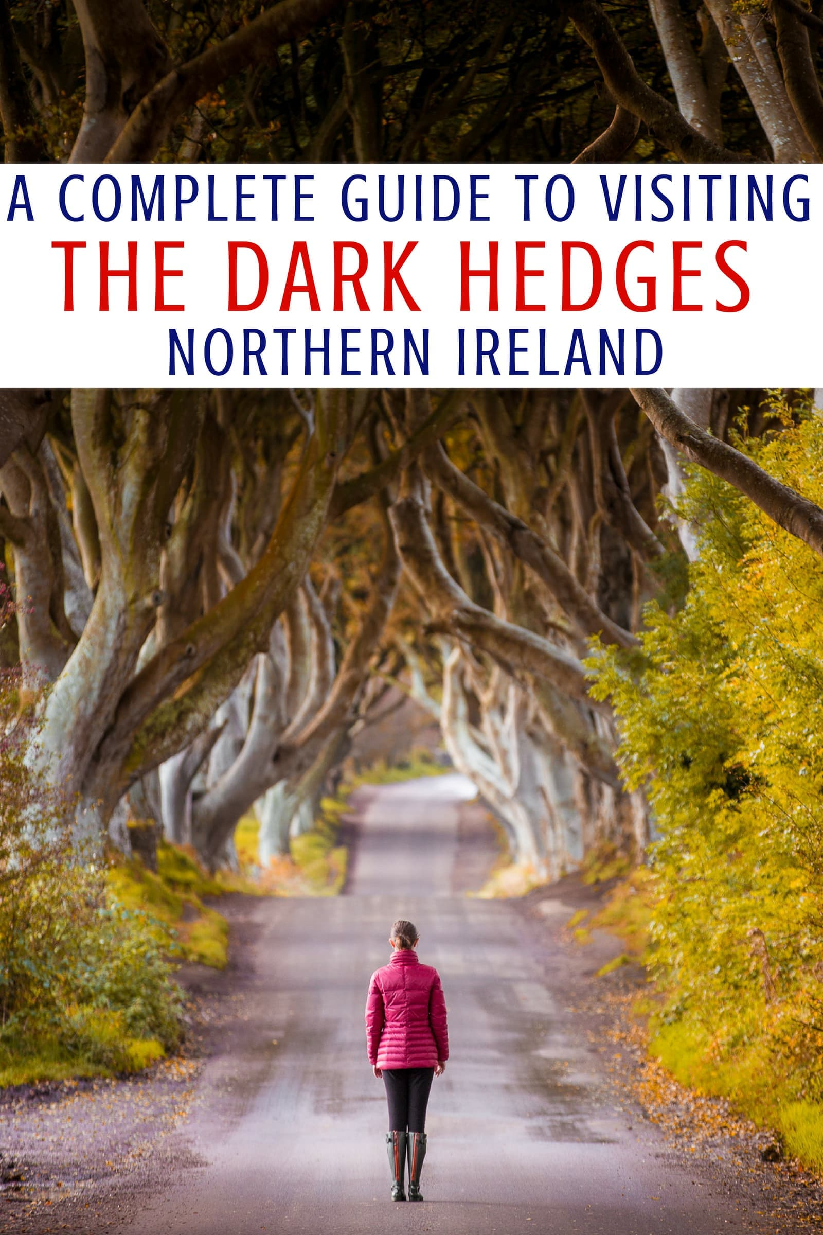 The Dark Hedges is one of the most popular attractions in Northern Ireland. It is a beautiful row of trees that has been made famous by their appearance in Game of Thrones. In this Dark Hedges guide, we're going to tell you everything you need to know to visit the Dark Hedges including how to get there, where to park, tips for photographing the Dark Hedges, how to avoid the crowds, and where you can eat and stay nearby. #DarkHedges #NorthernIreland #Ireland #GoT #GameofThrones #travel