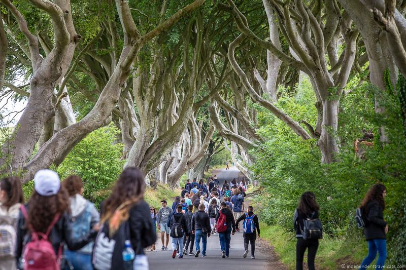 crowds The Dark Hedges Northern Ireland