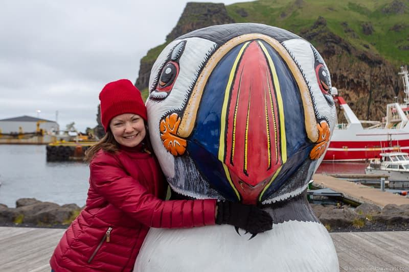 Westman Islands puffins in Iceland guide Iceland puffin