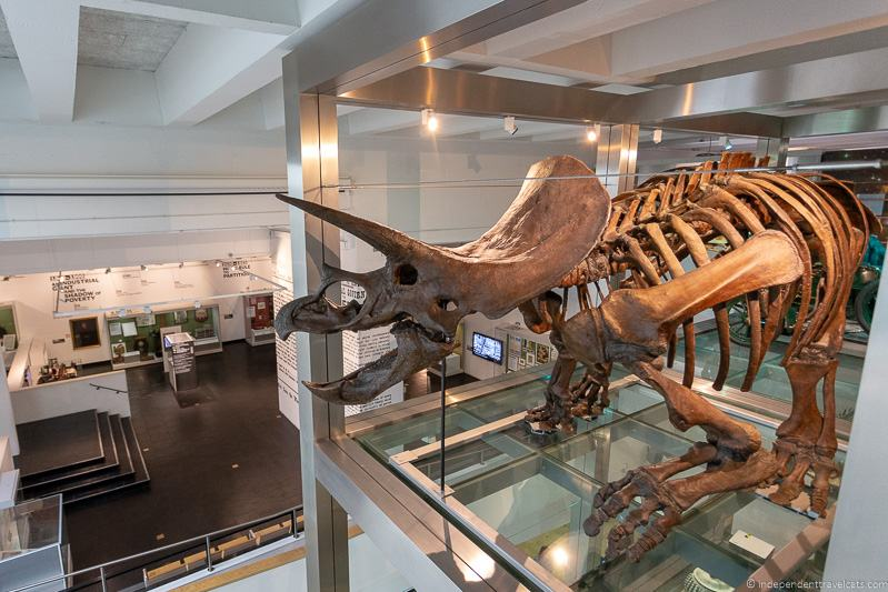 Ulster Museum things to do in Belfast Northern Ireland travel guide