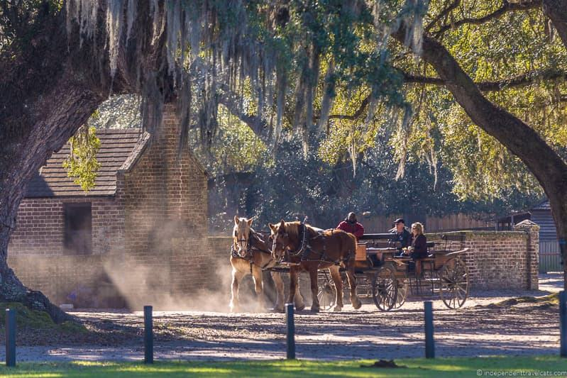 horse drawn carriage Middle Place Plantation tour Charleston plantations guide South Carolina plantation tours