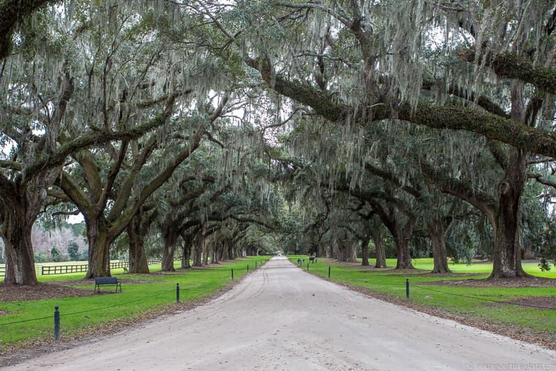 oak alley Boone Hal Plantation Charleston plantations guide South Carolina plantation tours
