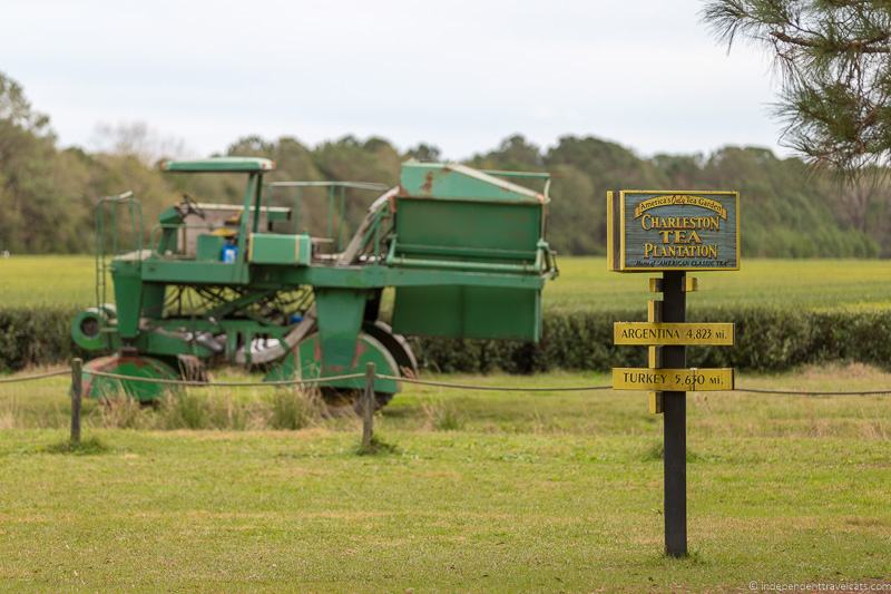 Charleston Tea Plantation Charleston plantations guide South Carolina plantation tours