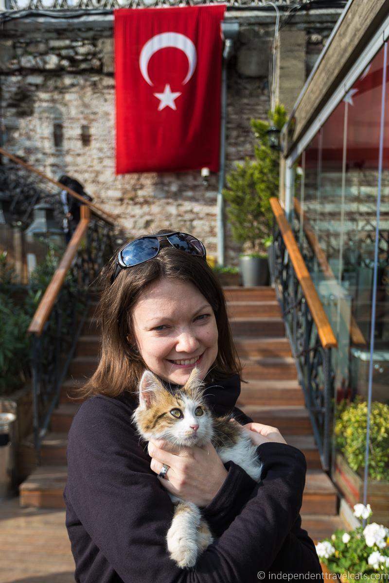 cat Turkey 2 weeks in Turkey itinerary