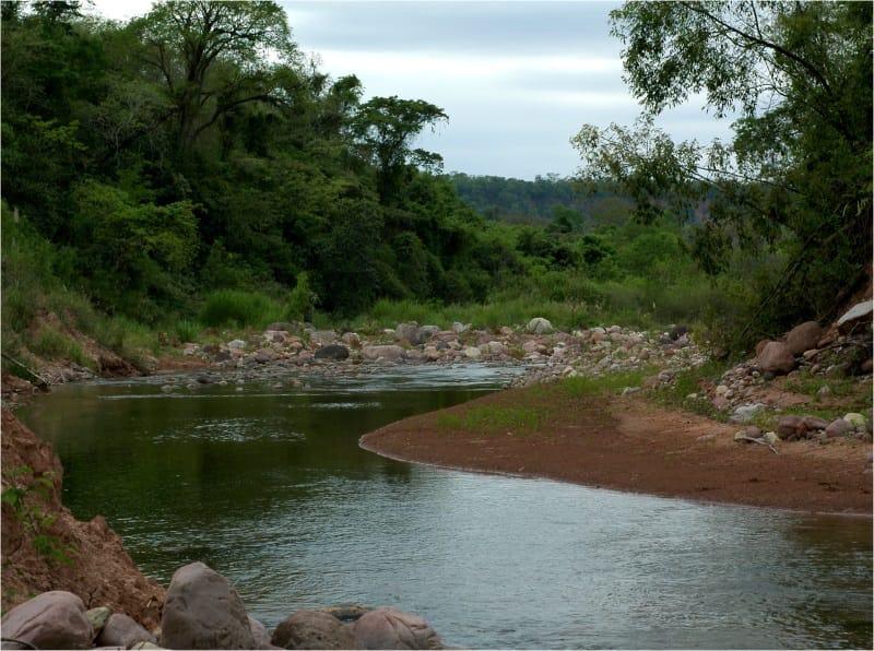 El Pantanoso Reserve Argentina Yungas Forest World Land Trust Fundación Biodiversidad-Argentina